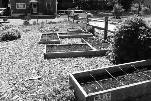 木製野菜栽培床